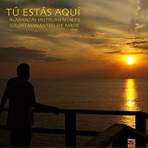 Alabanzas Instrumentales Grupo Manantial de Amor