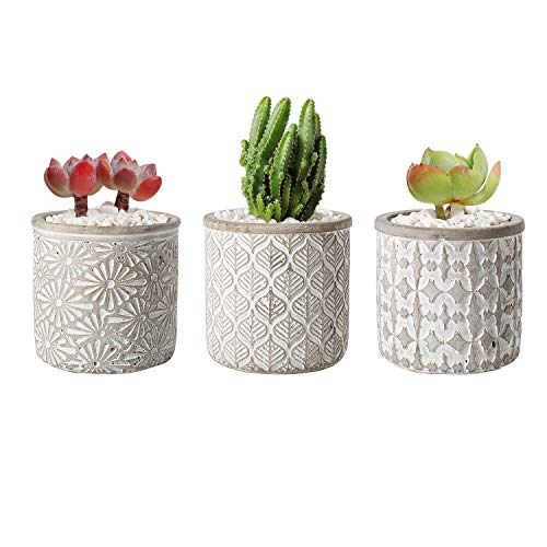 T4U 4 Inch Cement Pot Grey Set of 3, Small Concrete Succulent Round Planter Vase Plant Herb Cactus Container Window Box Holder for Home and Office Decor Birthday Wedding