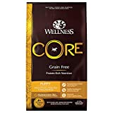 Wellness CORE Natural Grain Free Dry Dog Food, Puppy, 26-Pound Bag