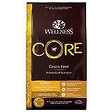 Wellness CORE Natural Grain Free Dry Dog Food, Puppy Health Chicken & Turkey Recipe, 26-Pound Bag