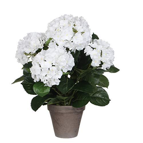 MICA Decorations 947278 Fleurs artificielles Hortensia Blanc