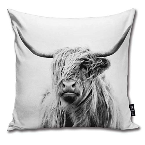 brandless Portrait Of A Highland Cow Velvet Soft Soild Microfiber Decorative Square Pillow Case Throw Cushion Cover for Sofa Bedroom Car with Invisible Zipper 18x18 Inch
