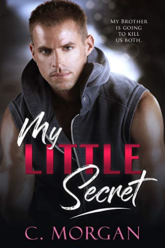 My Little Secret: A Brother's BFF Secret Baby Novel (English Edition)