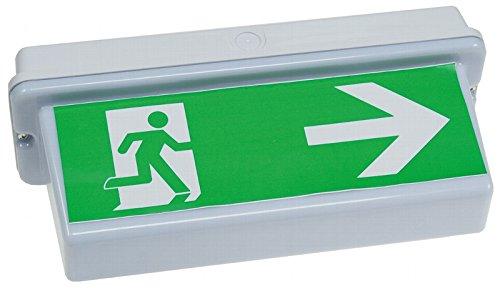 LED Fluchtwegleuchte Rettungsleuchte für Deckenmontage oder Wandmontage versch. Modelle z. Wahl (CT-21653-30LED-Deckenmontage)