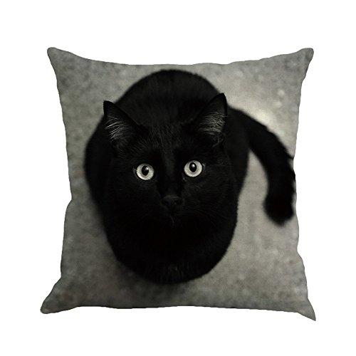 OYSOHE Katze Kissenbezug Dekoration Auto Sofa Schlafzimmer Kissenbezug,Waschbar,45x45cm