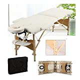 Massage Table Massage Bed Portable 2 Section Folding Couch Bed Lightweight Adjustable