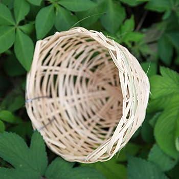 HomeDecTime 5X Nichoirs d'oiseaux Nids de Canaris Tissés en Bambou élevage d'Oiseaux Cage de Repos Perroquet