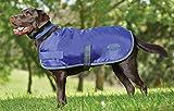 Weatherbeeta Windbreaker 420 Dog Coat, Windproof & Waterproof Jacket for Small Medium Large Dogs | Violet/Gray, 32'
