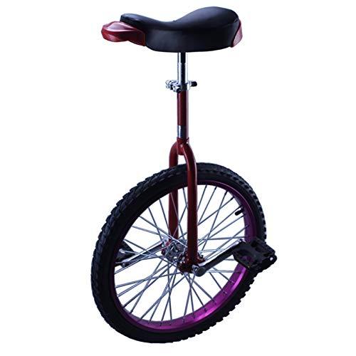TTRY&ZHANG Unicycle púrpura para niños (9-17 años de Edad), 16/18 Pulgadas Masculino Adolescente Rueda Unicycles, Adultos/Principiante 20/24 Pulgadas Balance de Equilibrio, Ejercicio Divertido