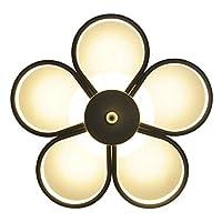 天井照明器具 クリエイティブパーソナリティシーリングランプ通路クロークルームバルコニーシーリングライト45Wホワイト 天井灯 (Color : White light)
