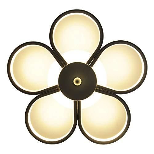 Lámpara de Techo Personalidad creativa Lámpara de techo Pasillo Guardarropa Balcón Led Luz de techo 45W Blanco Luminaria de Techo (Color : Huang Guang)