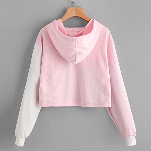 Sonnena Ladies Womens Girls Crop Hoodie New Cropped Hooded Hoody Sweatshirt Plain Jumper Heavy Sweat Pullover Tops (L, Pink 1)