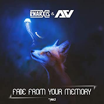 Fade From Your Memory
