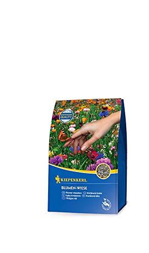 Rasensamen - Blumen - Wiese 250 g von Kiepenkerl