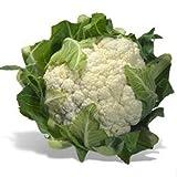 200以上の有機スノーボールカリフラワーの種〜おいしい健康的なステープルサバイバル食品