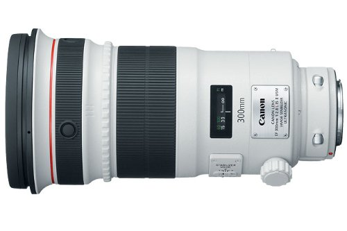 Canon EF 300mm f/2.8L IS USM II Super Telephoto Lens