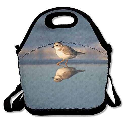 Gregarious Wading Bird Plover Lunch Tote Bag Bags Awesome Lunch Handbag Lunchbox Box For School Work Outdoor