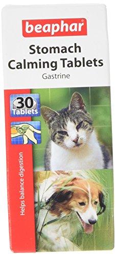 Monster Pet Supplies Sherley's - Pastiglie Gastrine, 30 Pezzi
