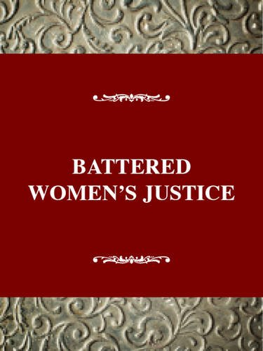 Battered Women's Justice (Social Movements Past and Present Series)