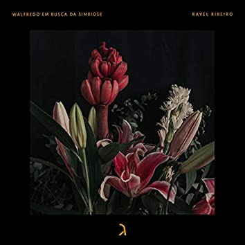 Ravel Ribeiro (feat. Uiu Lopes)