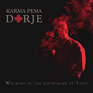 Walking In The Mountains Of Tibet (Tibetan Throat Singing Meditative Journey)