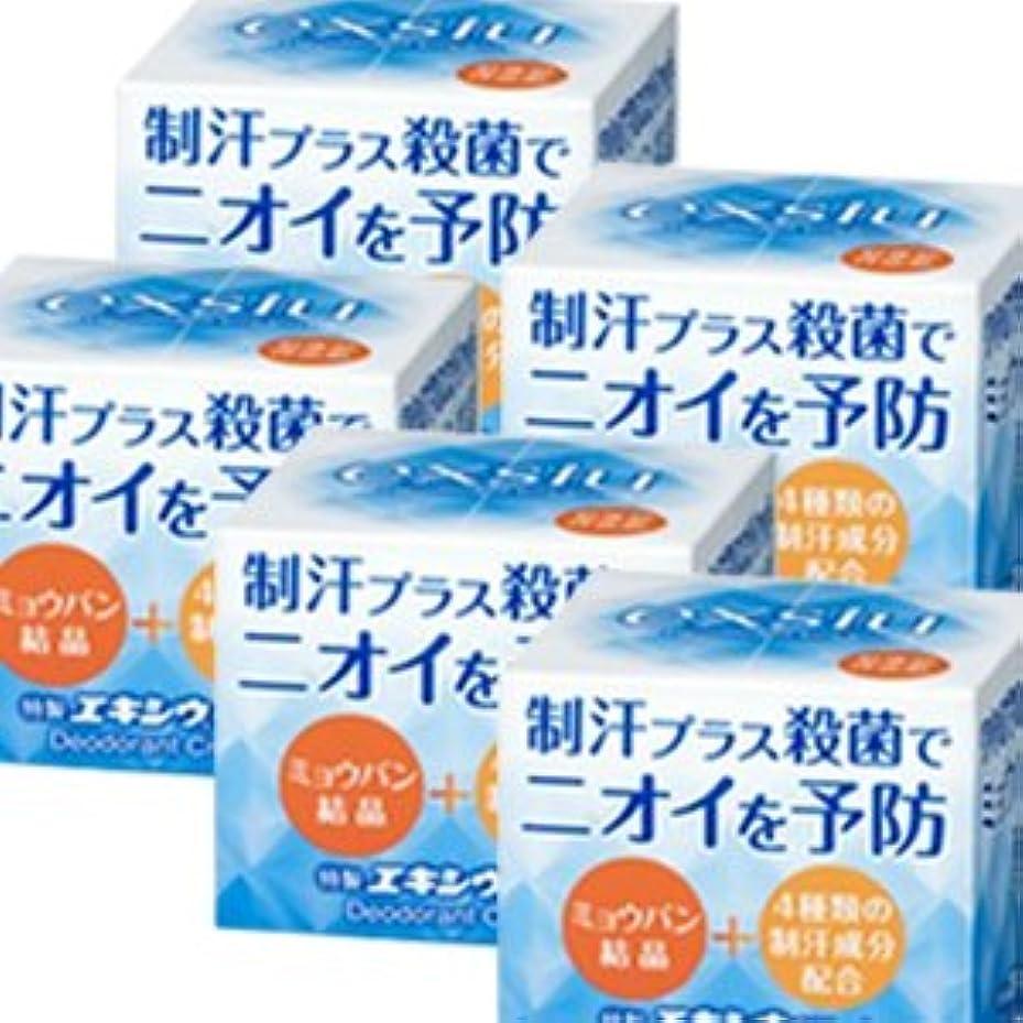 木製刃かける【5個】 特製エキシウクリーム 30gx5個 (4987145200228)