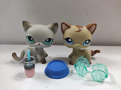 2 pcs/Set Littlest Pet Shop Short Hair Cats LPS Animal Figure Toys with Accessories