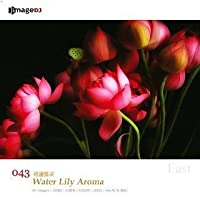 EAST vol.43 睡蓮の香り Water Lily Aroma