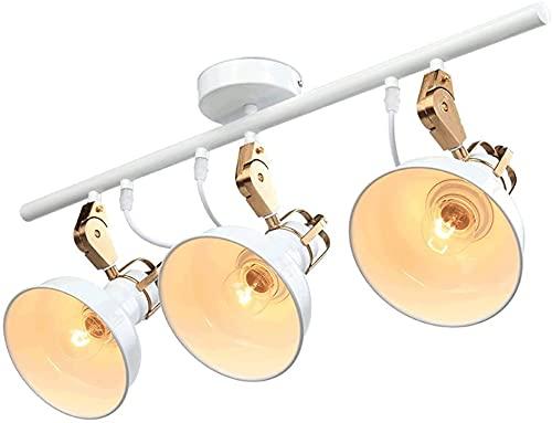 Luz del techo de la sala de estar Lámpara de techo LED moderna, lámpara de techo de hierro forjado, Arte de moda creativa Sala de estar Sala de estar Estudio Dormitorio Lámpara de techo