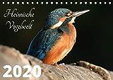 Heimische Vogelwelt - 2021 (Tischkalender 2021 DIN A5 quer)