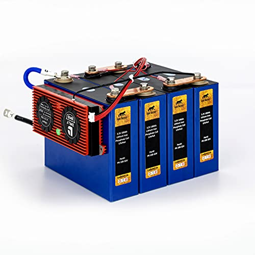 Lynx Battery 12V 100Ah Lithium Iron Phosphate LiFePO4 Rechargeable Prismatic Deep Cell Battery with BMS and Preset Cold Temp Cut Off for RV, Solar, Marine & Off-Grid Applications