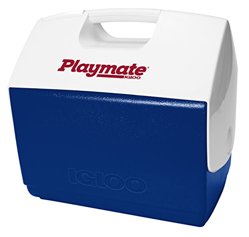 Igloo Kühlbox Playmate 15l, blau