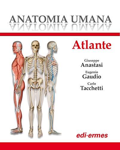 Anatomia umana. Atlante