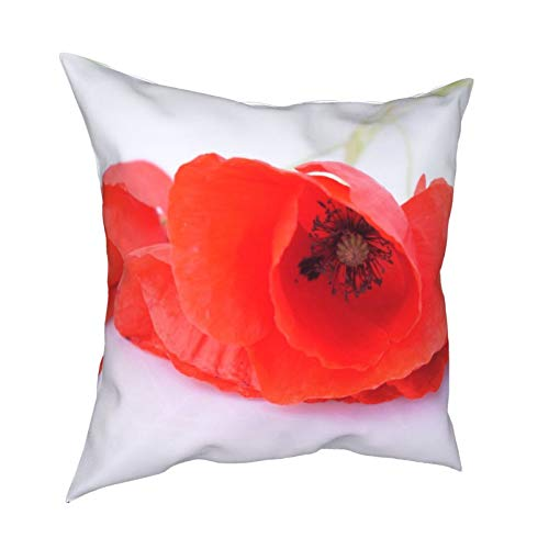 Fundas de almohada, diseño de amapola roja para jardín, primavera, floral, blanco, decoración para el hogar, fundas de cojín cuadradas para sofá, sala de estar, cama 45,7 x 45,7 cm