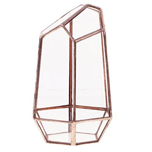MagiDeal Geometric Terrarium, Fairy Garten, Mini Glashaus, Pflanzgefäß, für Sukkulente Pflanzen - 10 x 10 x 15cm Kupfer