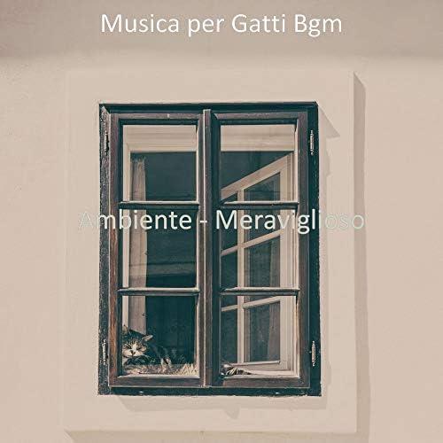 Musica per Gatti Bgm
