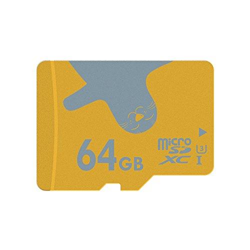 ALERTSEAL 2 Pezzi Scheda MicroSD 64GB UHS-I(U3) Classe 10(C10) microSDXC Memory Card(Adattatore SD incluso)