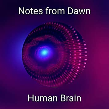 Notes from Dawn
