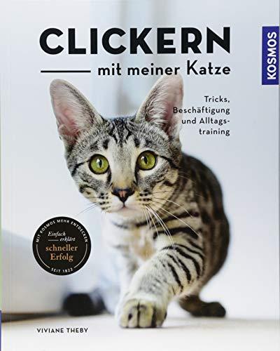 Clickern mit meiner Katze: Tricks, Beschäftigung und Alltagstraining