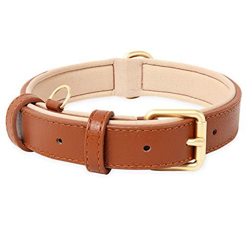 HEELE Hundehalsband, Hundehalsband mit gepolstert und echtes Leder, Verstellbar, Halsband für Welpen Kleine Hunde, Braun, S