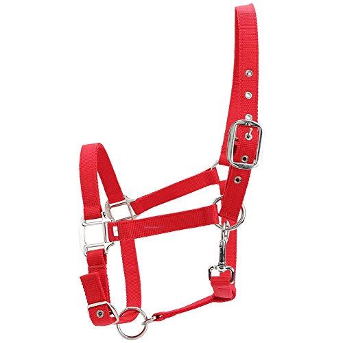 Tnfeeon Halter de Control de Brida de Caballo de 6 mm, Accesorios de equitación Ajustables de Color Rojo Engrosado Ajustable