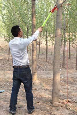 26 Feet Tree Pole Pruner 8Poles Saw Trimmer Shear Cutter Fiskers Pruning Coconut Branch