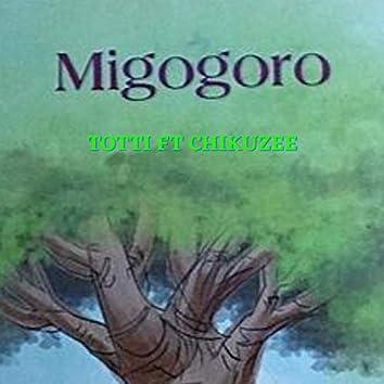 Migogoro