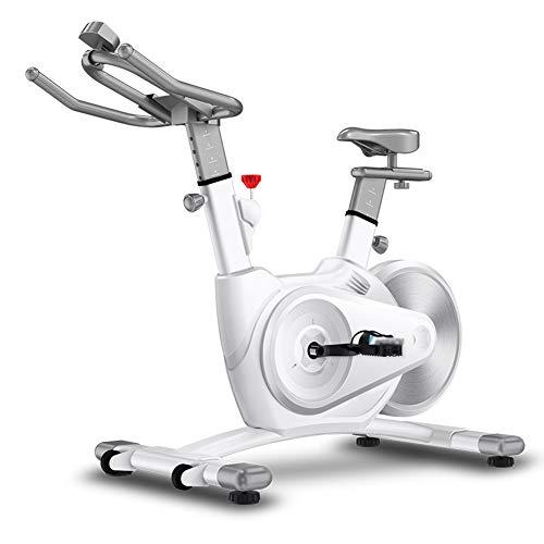 Bicicleta De Ejercicio Bicicleta EstáTica De Interior Pantalla LED, Resistencia Ilimitada, Soporte para Hervidor, Asiento Ajustable, para Interior Y Exterior,Blanco