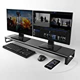 Dual Monitor Stand Riser mit 4 USB 3.0 Hub Ports, Aluminium stark und stabil für Laptop Computer...