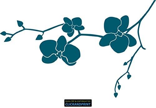 CLICKANDPRINT Aufkleber » Orchidee, 20x12,6cm, Petrol • Dekoaufkleber/Autoaufkleber/Sticker/Decal/Vinyl