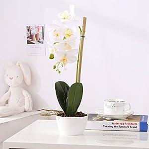 Imiee Phaleanopsis Arrangement with Vase Decorative Artificial Orchid Flower Bonsai (White)