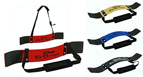 EVO Fitness Gewichtheben Arm Blaster Bizeps Isolator Support Für Gym Riemen Tücher - Rot