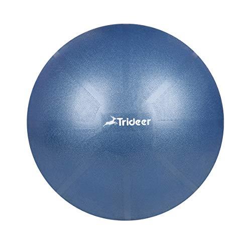 バランス ボール trideer