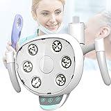 Lamparas de Inducción de Luz Fría Dental, Luz Bucal, Gran Profundidad de Campo, Separación Incolora para Clínica